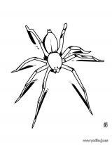 Imágenes de hormigas para dibujar (5/16)