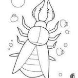 Dibujos de hormigas fáciles (3/7)