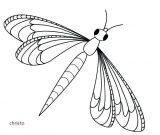 Imágenes de libélulas para dibujar (3/16)