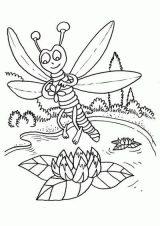 Imágenes de libélulas para dibujar (11/16)