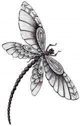 Imágenes de libélulas para dibujar (16/16)