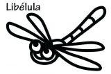 Imágenes de libélulas para colorear (9/16)