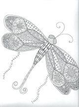 Imágenes de libélulas para colorear (14/16)