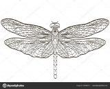 Dibujos de libélulas para colorear (15/15)