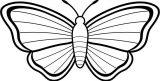 Mariposas para colorear (2/16)