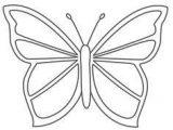 Imágenes de mariposas para colorear (1/16)