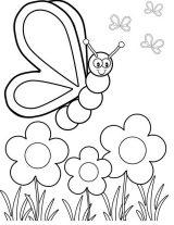 Imágenes de mariposas para colorear (5/16)