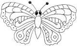 Imágenes de mariposas para colorear (14/16)
