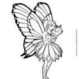Mariposas para pintar (3/16)
