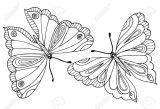 Mariposas para pintar (13/16)
