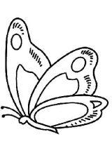 Mariposas para colorear e imprimir (6/16)