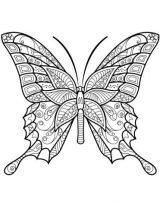Mariposas para colorear e imprimir (8/16)