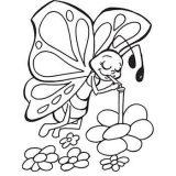 Imágenes de mariposas para pintar (1/16)