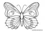 Imágenes de mariposas para pintar (3/16)