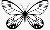 Imágenes de mariposas para pintar (7/16)