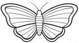Imágenes de mariposas para pintar (12/16)