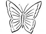 Imágenes de mariposas para pintar (13/16)