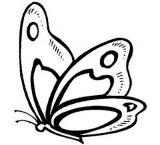 Imágenes de mariposas para pintar (16/16)
