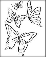 Dibujos de mariposas para pintar (3/11)