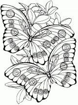 Dibujos de mariposas para pintar (6/11)