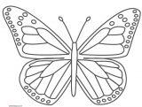 Dibujos de mariposas para pintar (9/11)