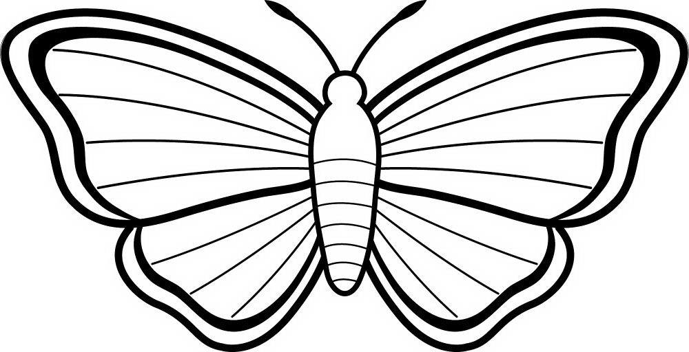 Mariposas Para Colorear 2019 Dibujos De Mariposas Para Colorear