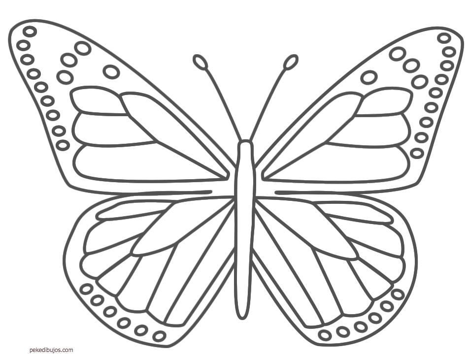 Dibujos Animados De Mariposas Para Colorear: Mariposas Para Colorear 2019