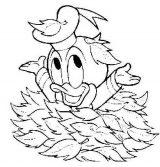 Dibujos para colorear del pato Donald (45/60)