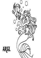 Ariel para colorear (7/16)