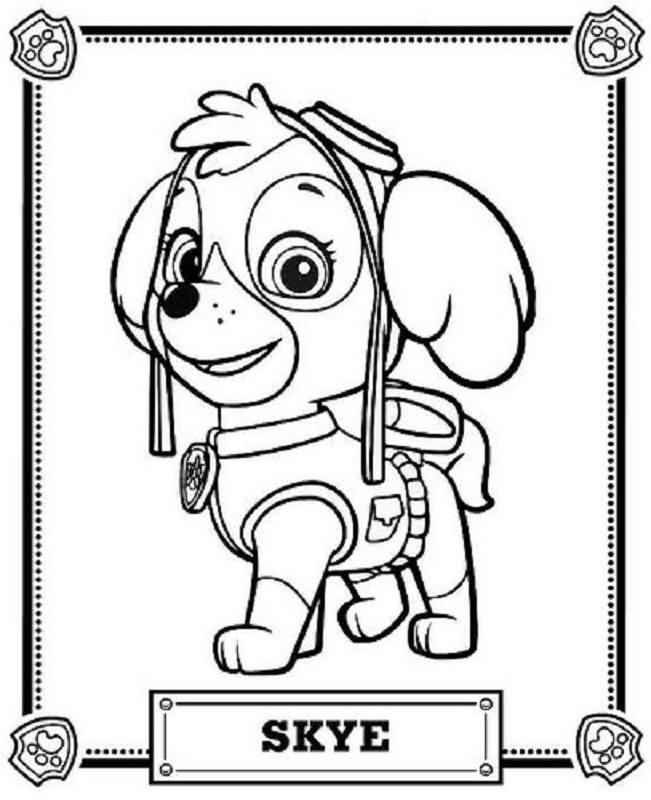 Skye De La Patrulla Canina Para Colorear 2019 Dibujos De Sky Para